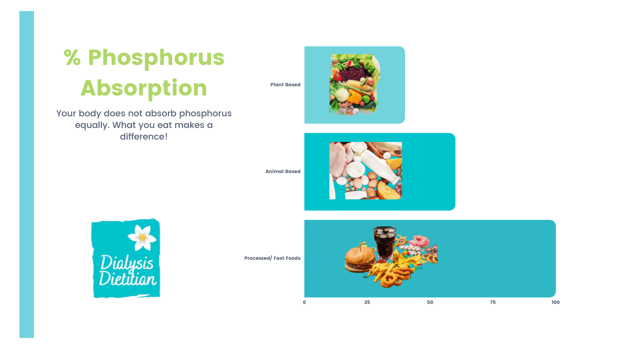 Graph chart on the % phosphorus absorbed by plant, animal, and processed foods. Dialysis Dietitian.